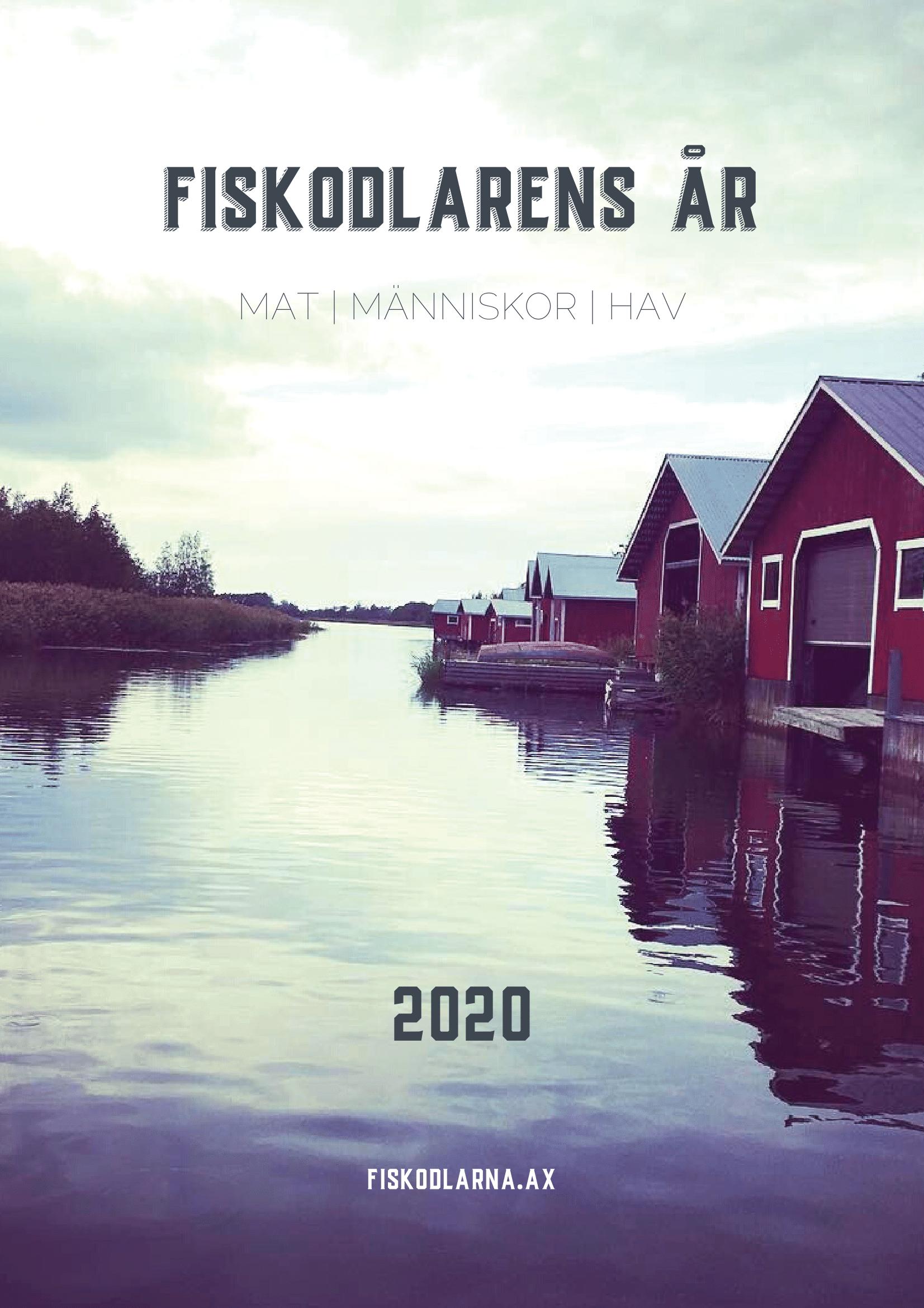 länk till årskrönika 2020